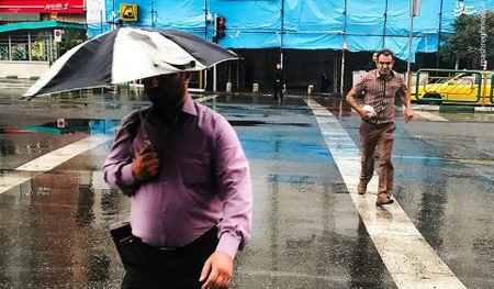 بارش باران تابستانی در تهران (7)