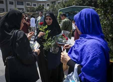 مراسم روز عفاف و حجاب در بازار تهران 6 مراسم روز عفاف و حجاب در بازار تهران