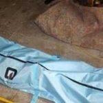 علت مرگ خواهر علی قربانزاده