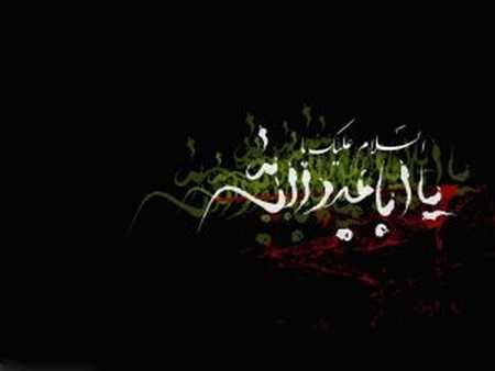 عکس محرم ویژه شهادت امام حسین (ع) مهر 96 (18)