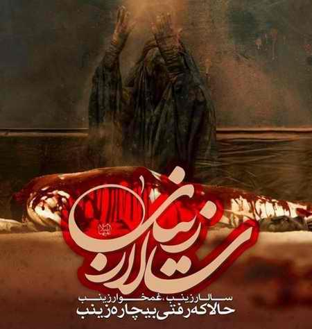 عکس نوشته حضرت زینب (س) در کربلا (2)