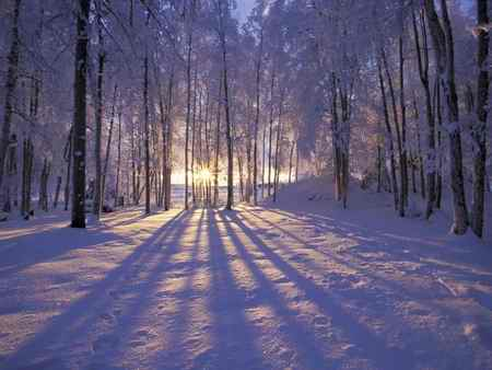 انشا درباره فصل زمستان سرما برف 1 انشا درباره فصل زمستان سرما برف