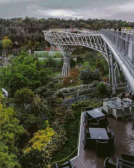 پل طبیعت کجاست به همراه آدرس و جزئیات کامل 7 پل طبیعت کجاست به همراه آدرس و جزئیات کامل
