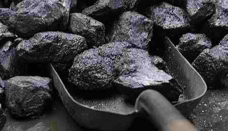 زغال سنگ چگونه بوجود می آید (2)