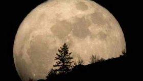 چرا ناسا به ماه برنگشت (4)