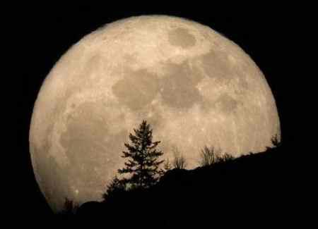 چرا ناسا به ماه برنگشت 4 چرا ناسا به ماه برنگشت