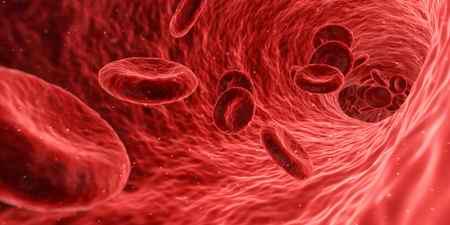 rbc در آزمایش خون چیست 2 rbc در آزمایش خون چیست