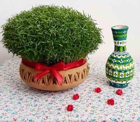 سبزه عید سبزه عید چند روزه سبز میشود