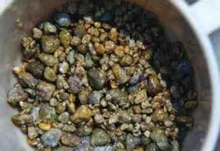 خوردن کدام دانه برای رفع کیسه صفرا مفید است 4 خوردن کدام دانه برای رفع کیسه صفرا مفید است
