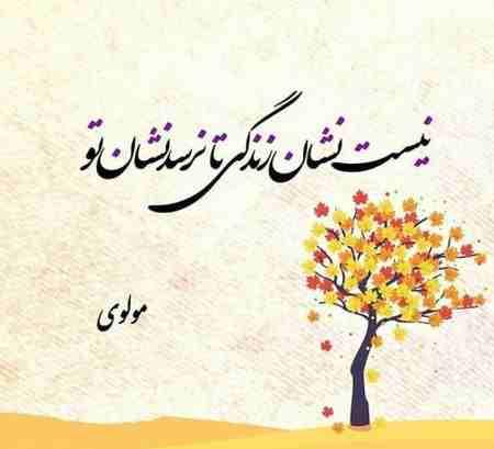 اشعار مولانا درباره خدا (1)