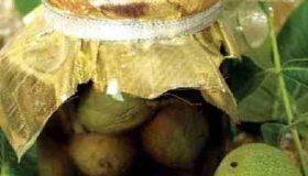 طرز تهیه ترشی گردو (1)