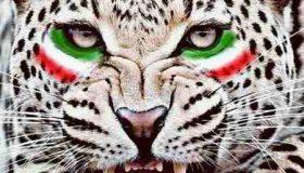عکس نوشته تیم ملی فوتبال ایران (9)
