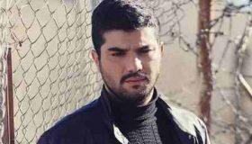 آیا حامد در سریال پدر زنده است