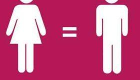 فمینیست چیست