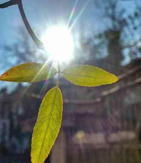 مدت زمان رسیدن نور خورشید به زمین چقدر است مدت زمان رسیدن نور خورشید به زمین چقدر است