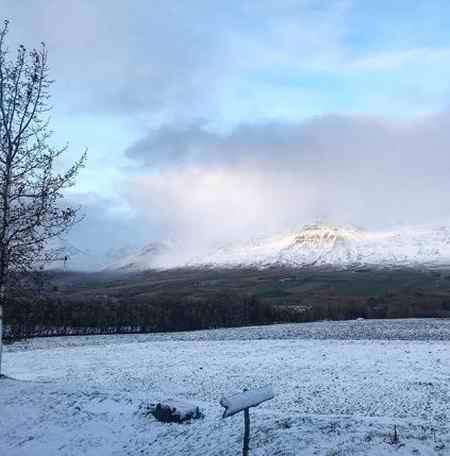 شباهت بهار و زمستان چیست (2)