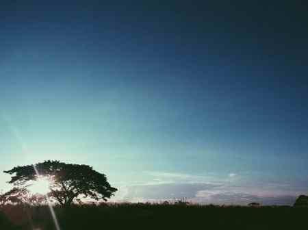 شعر زیبا در مورد صبح (5)