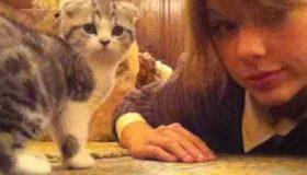عکس گربه گران قیمت تیلور سویفت (5)