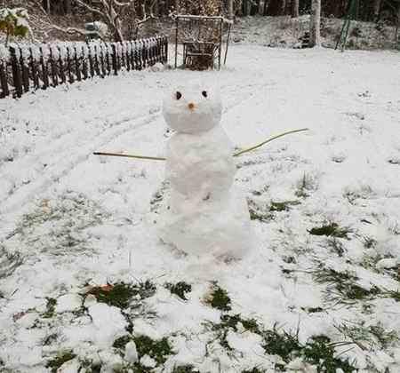 متنی ادبی درباره یک صبح سرد و برفی زمستانی بنویسید 8 متنی ادبی درباره یک صبح سرد و برفی زمستانی بنویسید