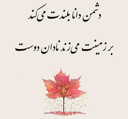 معنی ضرب المثل دشمن دانا بلندت میکند بر زمینت میزند نادان دوست (1)