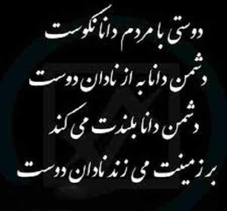 معنی ضرب المثل دشمن دانا بلندت میکند بر زمینت میزند نادان دوست (3)