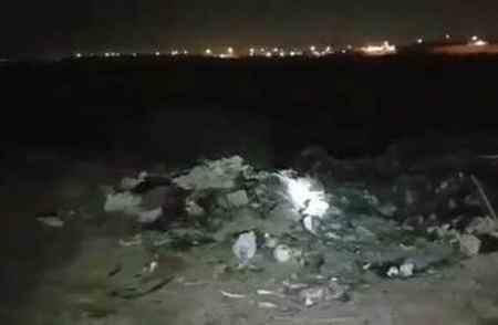 ماجرای سوزاندن 300 سگ در نزدیکی اهواز چیست