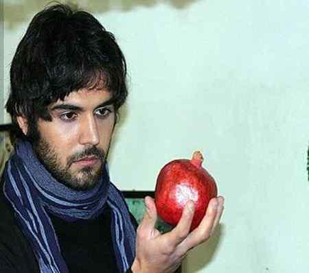 بازیگر نقش حامد در سریال لحظه گرگ و میش