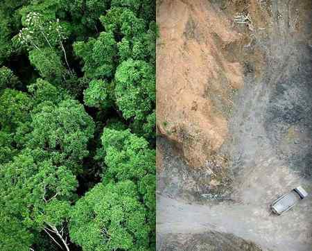 میان محیط زیست و سلامتی چه ارتباطی دارد