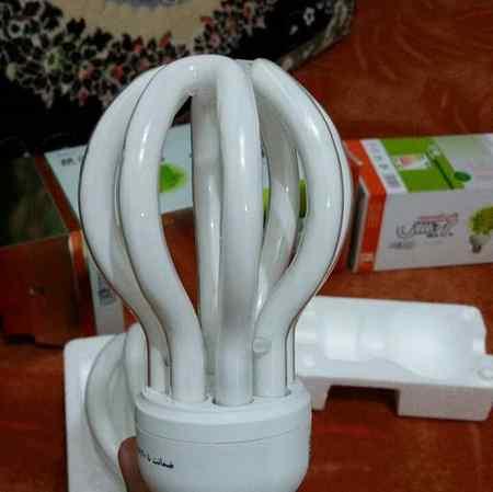 شکستن لامپ های مهتابی و کم مصرف چه ضرری برای سلامت انسان و چه خطری برای محیط زیست دارد؟