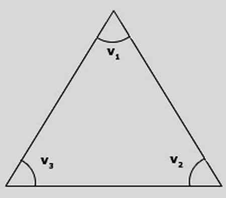 مثلث چند قطر دارد