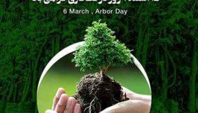 مقاله در مورد درختکاری