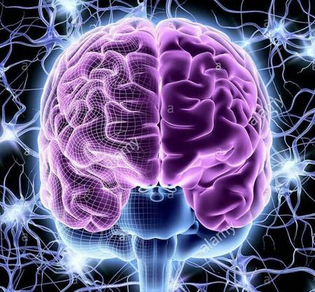 چگونه حافظه خود را قوی کنیم