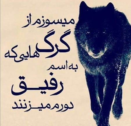 http://farsiha.ir/