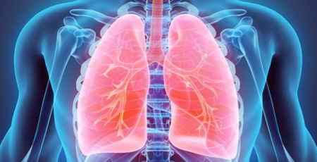 تاثیر-فست-فود-بر-سیستم-تنفسی