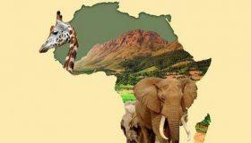 کشور آفریقای جنوبی چند پایتخت دارد