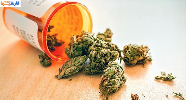 ماریجوانا چیست؟فواید و مضرات آن