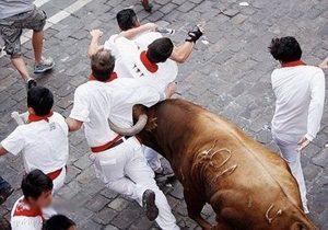 ورزش فرار از گاو