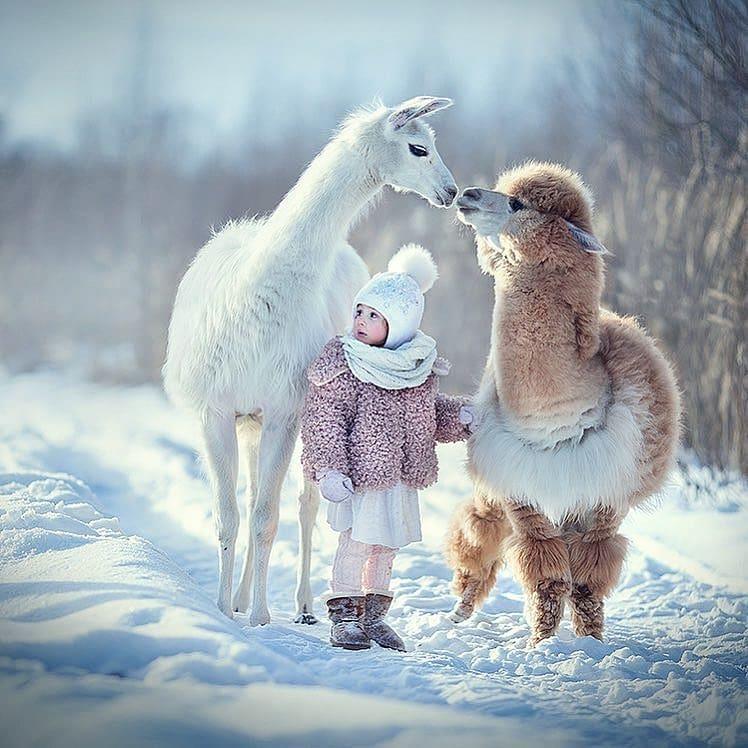 عکس های خیلی بامزه از حیوانات