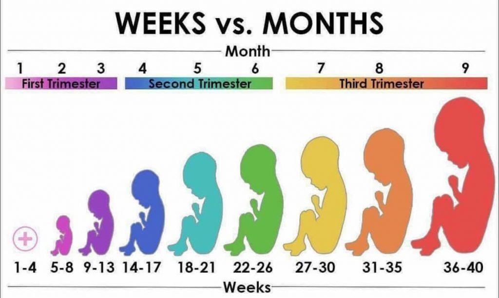 ماه آخر بارداری چگونه میگذرد؟