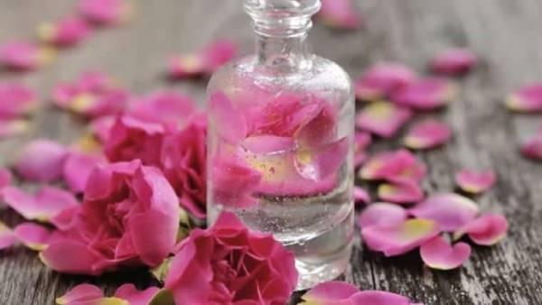 شربت گلاب