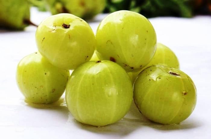آملا انگور هندی