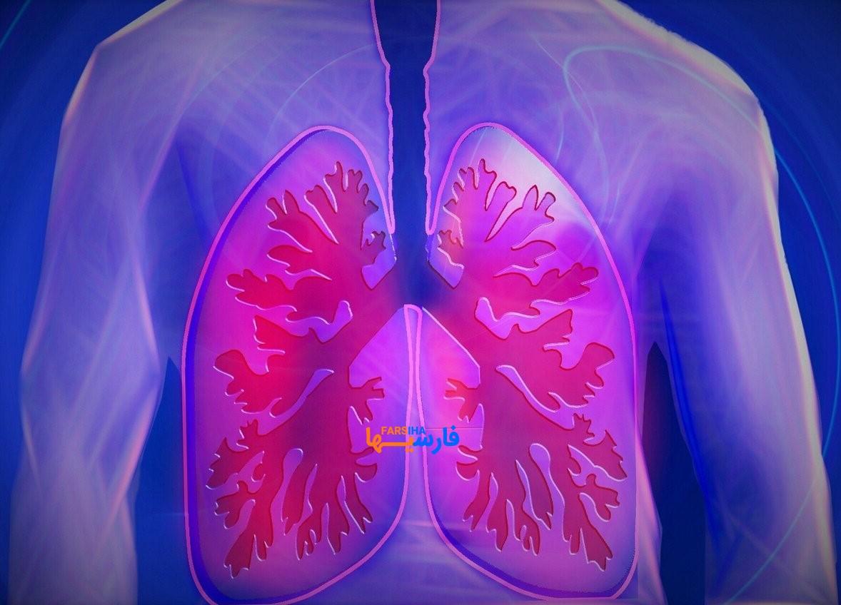 چگونه ریه ها را پاکسازی کنیم؟ • مجله آنلاین فارسی ها .پاکسازی ریه ها