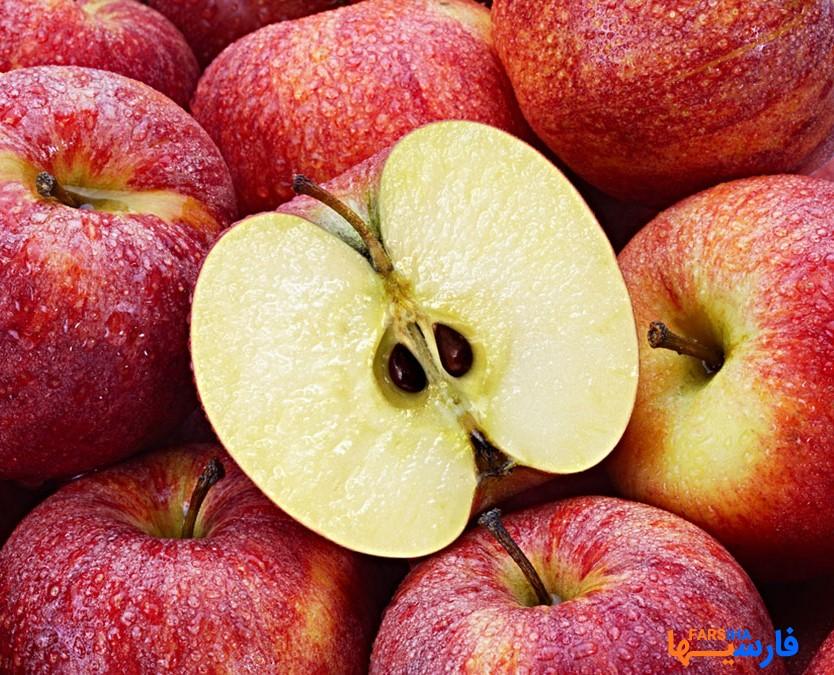 این خوراکی ها را اصلا به پرنده ها ندهید • مجله آنلاین فارسی ها.خوراکی های مضر برای پرندگان
