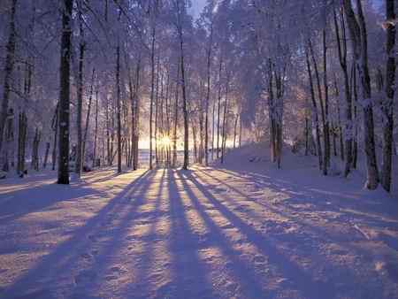 انشا درباره فصل زمستان سرما برف (1)