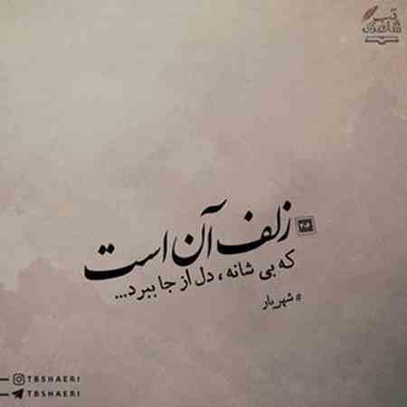 شعر زلف آن است که بى شانه دل از جا ببرد از شهریار (4)