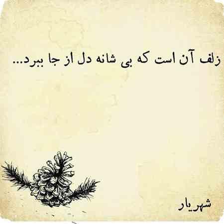 شعر زلف آن است که بى شانه دل از جا ببرد از شهریار (6)