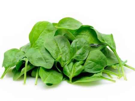 از برگ چه گیاهانی به عنوان غذا استفاده میکنیم (2)