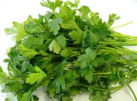 از برگ چه گیاهانی به عنوان غذا استفاده میکنیم (3)