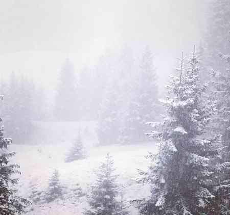 متنی ادبی درباره یک صبح سرد و برفی زمستانی بنویسید (1)