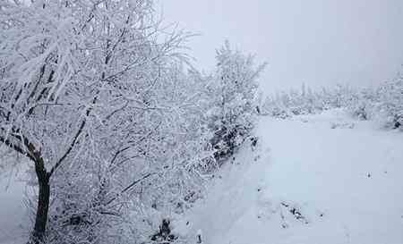 متنی ادبی درباره یک صبح سرد و برفی زمستانی بنویسید (2)